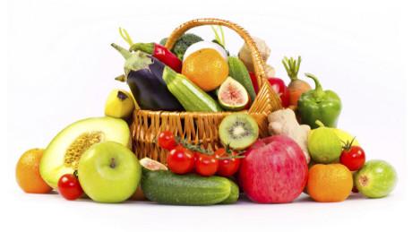 cursos sector hortofruticola. centro de estudios espadan